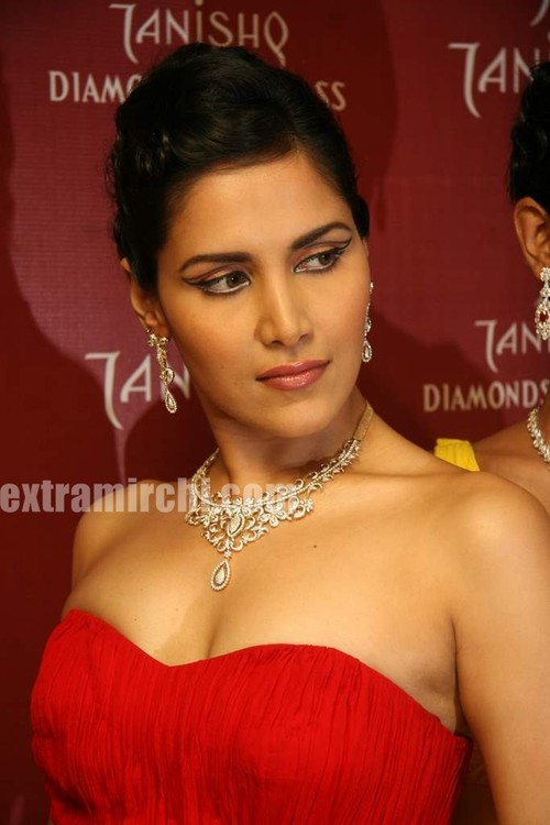 Tanishq-diamonds-12.jpg
