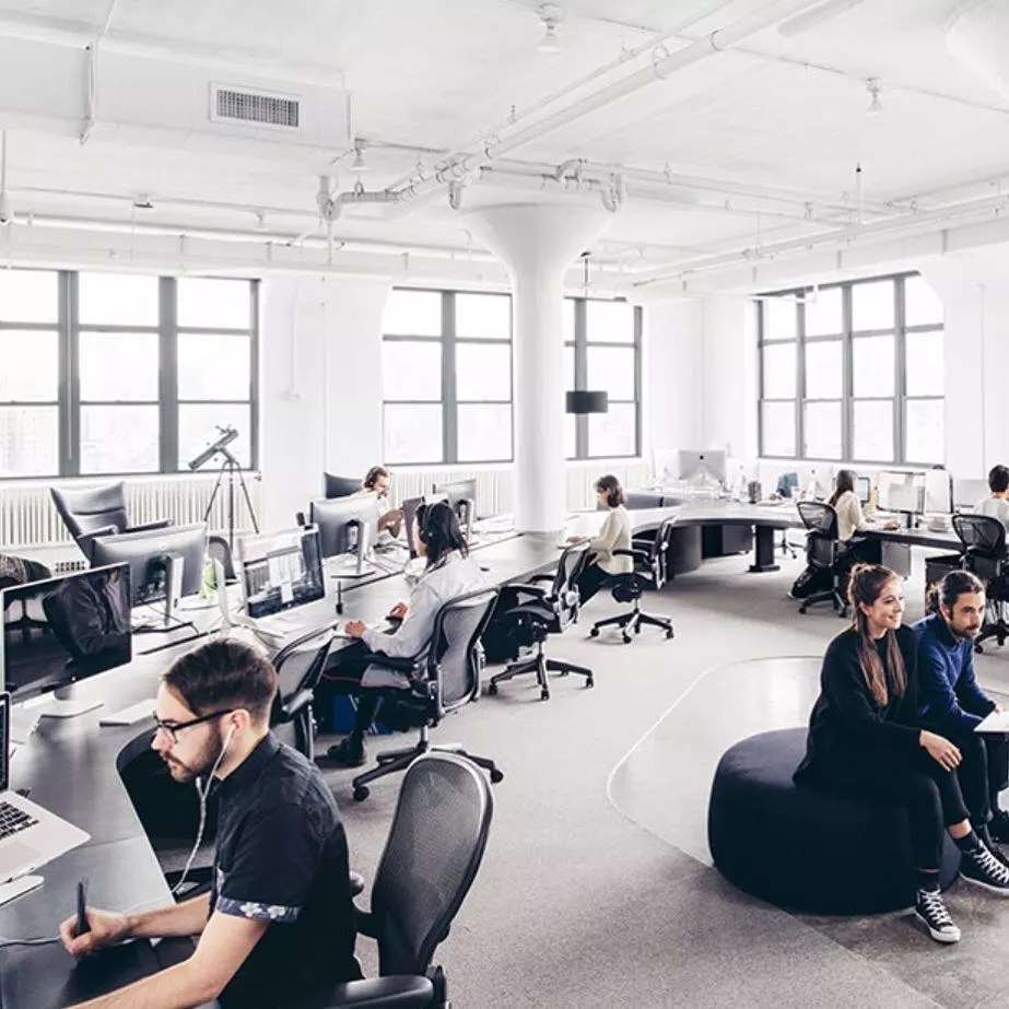 People Sitting in a Modern Office Space While Working at a Long Desk. Photo by Instagram user @area3design