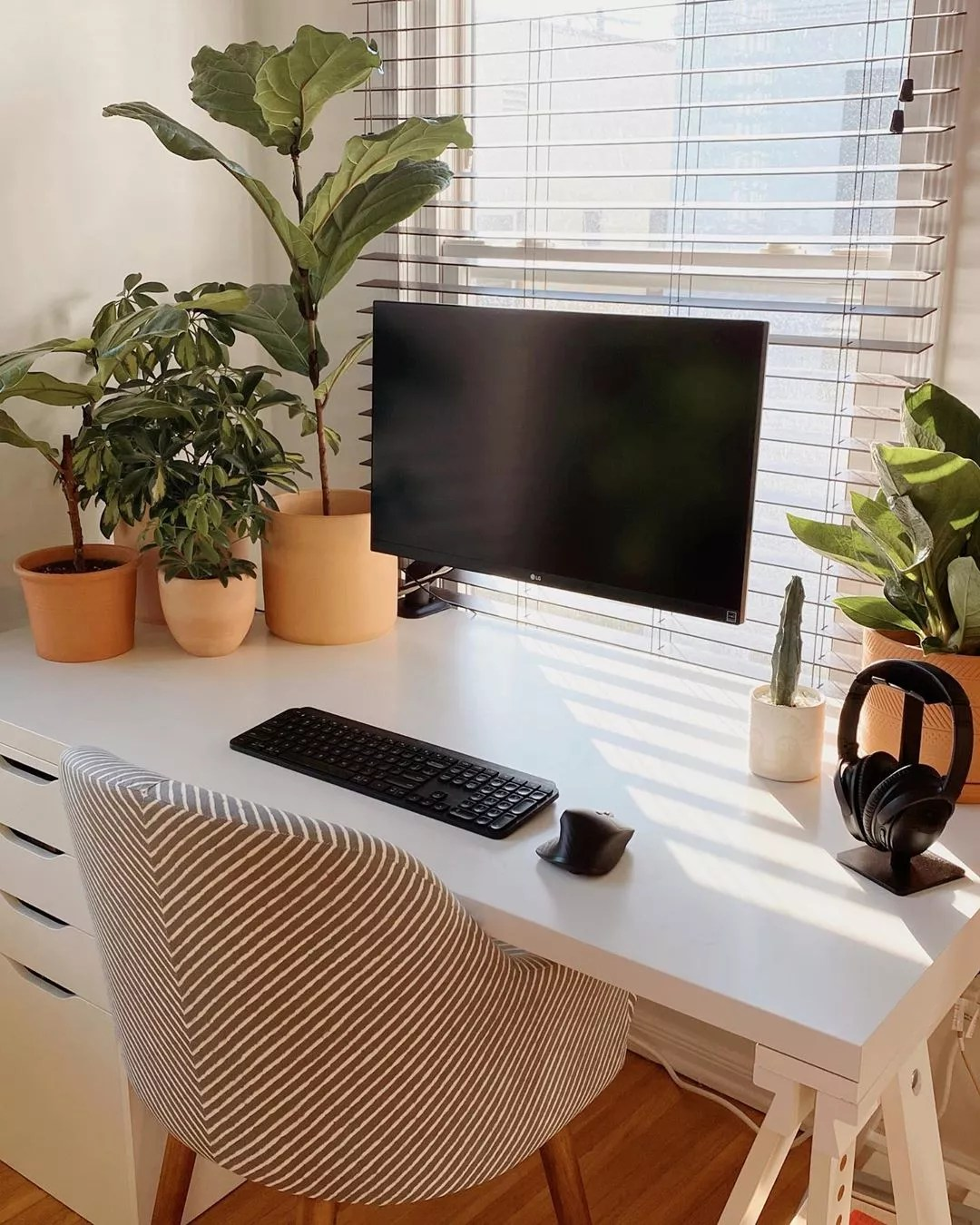 Desk with computer surrounded by plants. Photo by Instagram user @ashleyhosmer
