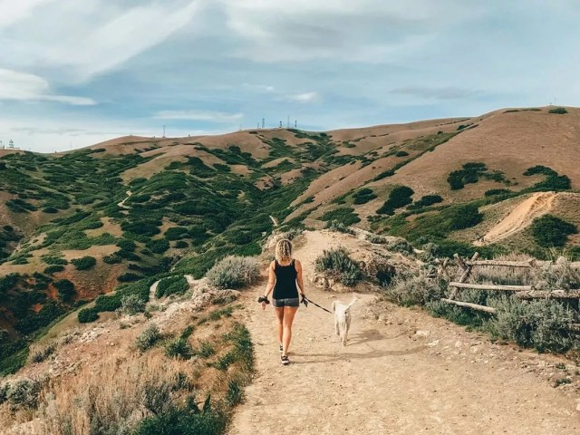 Woman walking with her dog along a hiking trail. Photo by Instagram user @andreafcannon