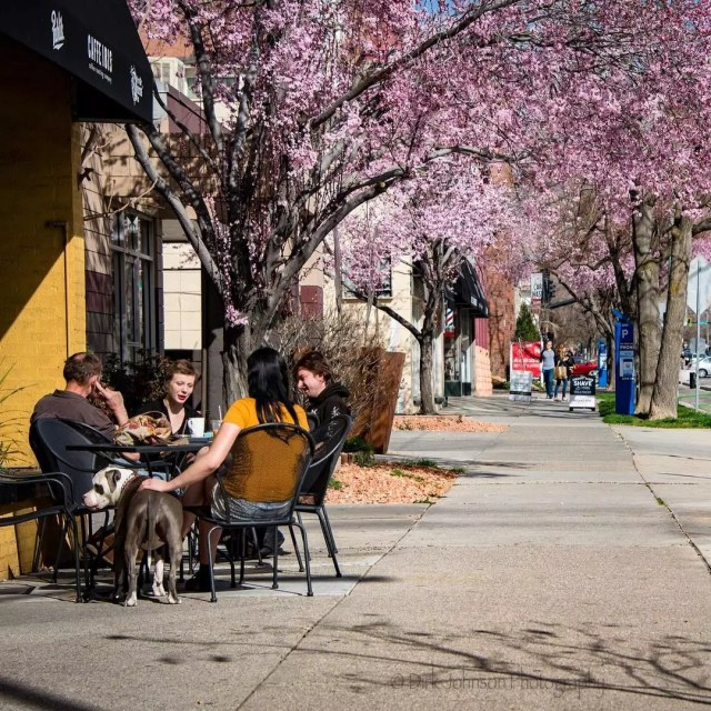 Sidewalk view of a street in Salt Lake with people sitting outside and trees in full bloom with pink and purple flowers. Photo by Instagram user @dirkjohnson
