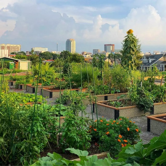 26 Easy DIY Ideas For Creating An Urban Garden