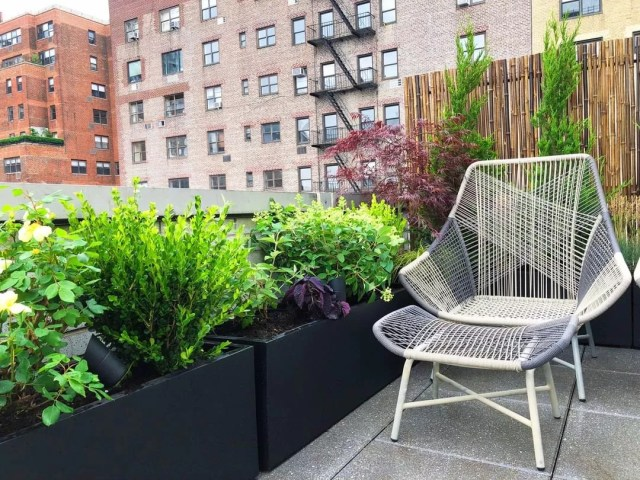 Rooftop garden in NYC. Photo by Instagram user @nycgardendesign