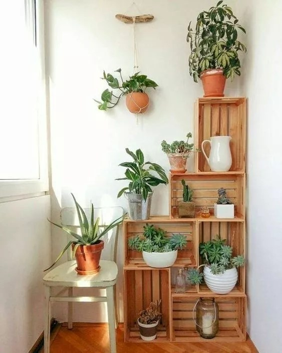Plants displayed on repurposed crates in home. Photo by Instagram user @gardening_goals