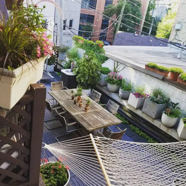 Rooftop garden with container garden. Photo by Instagram user @senarosenberg