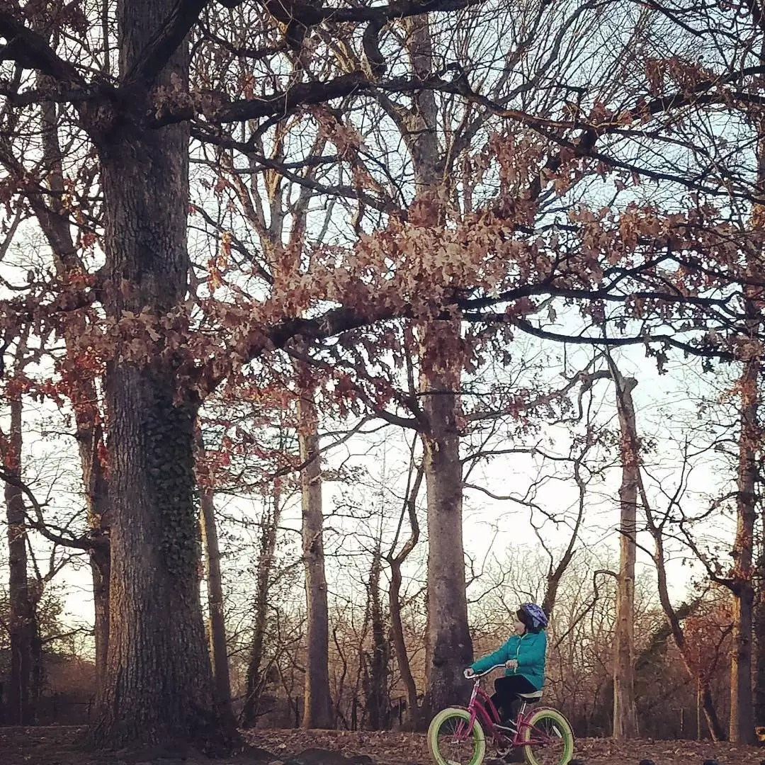 Young girl rides her pink bike on a tree-lined path. Photo by Instagram user @bikearlington