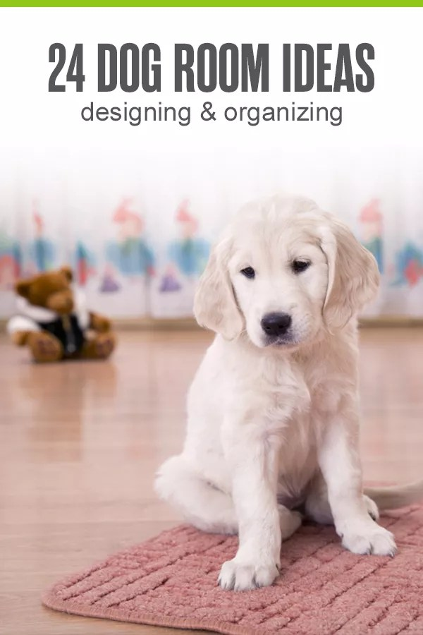 24 Ideas For Designing Organizing A Dog Room Extra Space Storage