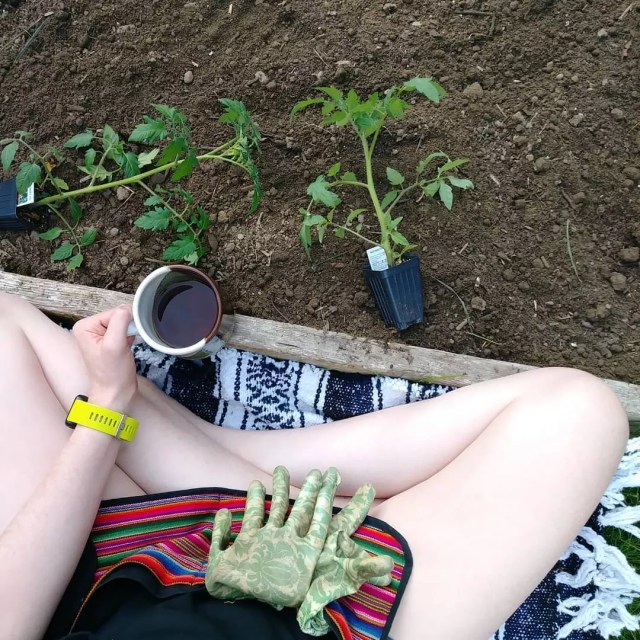 Minimalist gardening. Photo by Instagram user @sweetloveginger