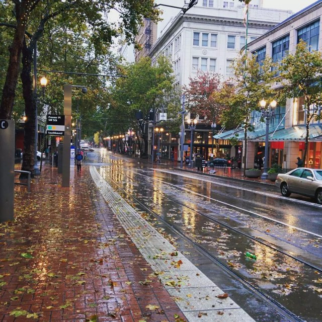 Downtown Portland street after rain with leaves on the ground Photo by Instagram user @justlivinglife123