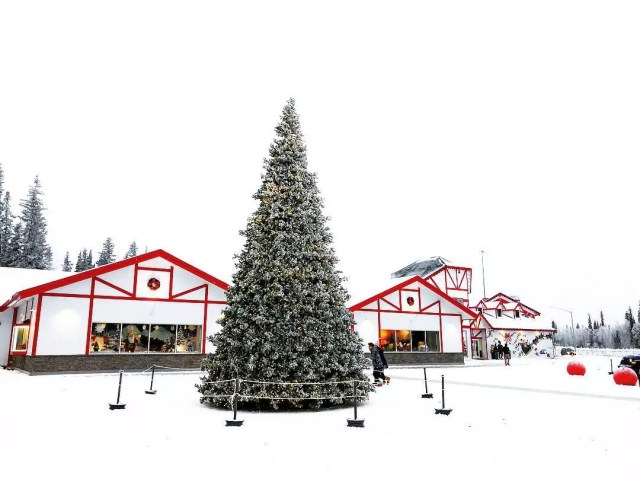 Giant Christmas tree by white and red building. Photo by Instagram user @joycew2ng