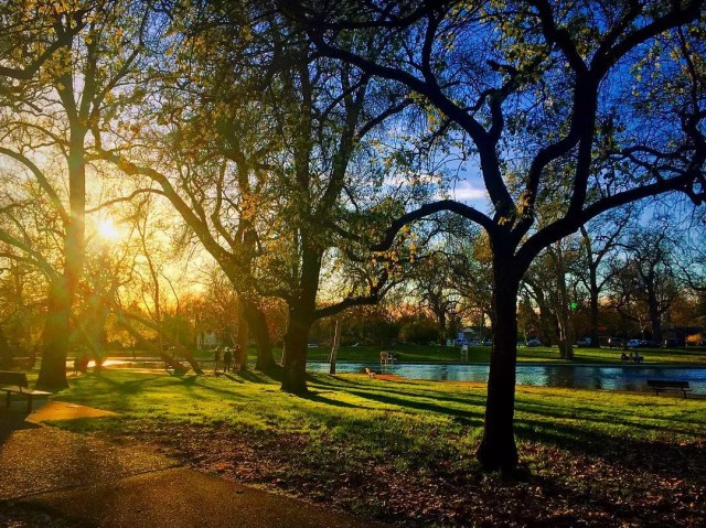 Sunset in Bidwell Park in Chico, CA. Photo by Instagram user @nikki_mackk