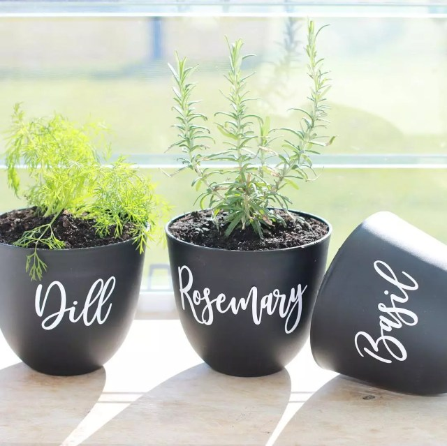 Homemade Pots with Dill, Rosemary, and Basil. Photo by Instagram user @luxehomelabels