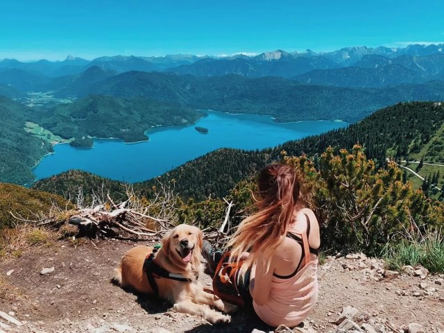 Woman Sitting with Gold Retreiver on a Mountaintop Trail Overlooking a Gorgeous Lake. Photo by Instagram user @samtaylor93