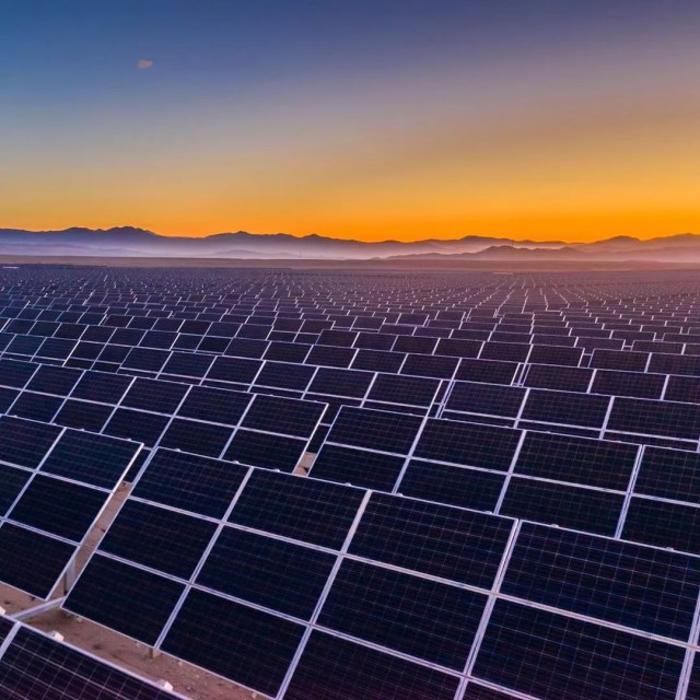 Solar panels at sunset. Photo by Instagram user @environmental_defense_fund