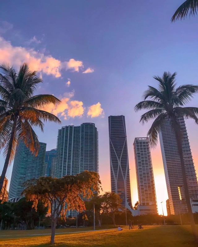 High-rise condo buildings in Miami, FL. Photo by @lmcala