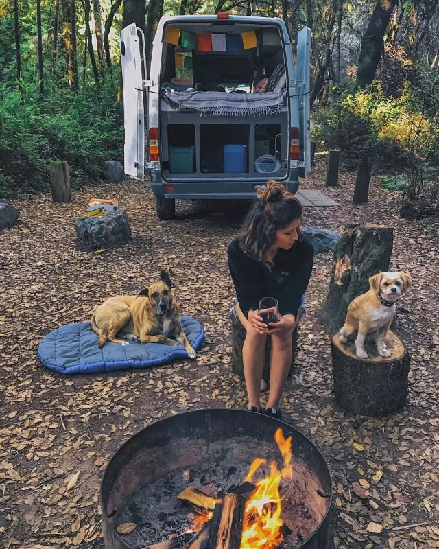 Girl sitting outside of her van with her dogs. Photo by Instagram user @noel_russ