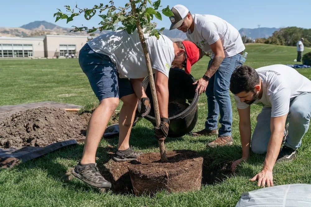 Extra Space Storage team members work to plant trees in Constitution Park, Salt Lake City, UT