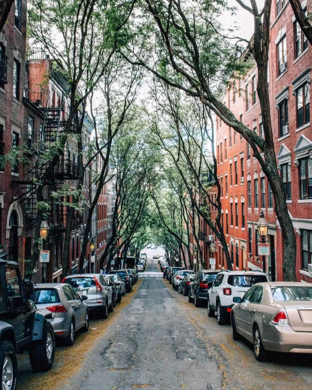 Street with brick rowhouses on each side. Photo by Instagram user @emkanch