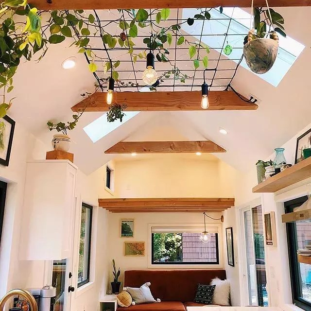 Tiny home with skylight and plants hanging from ceiling. Photo by Instagram user @tinyhouse.minimaison