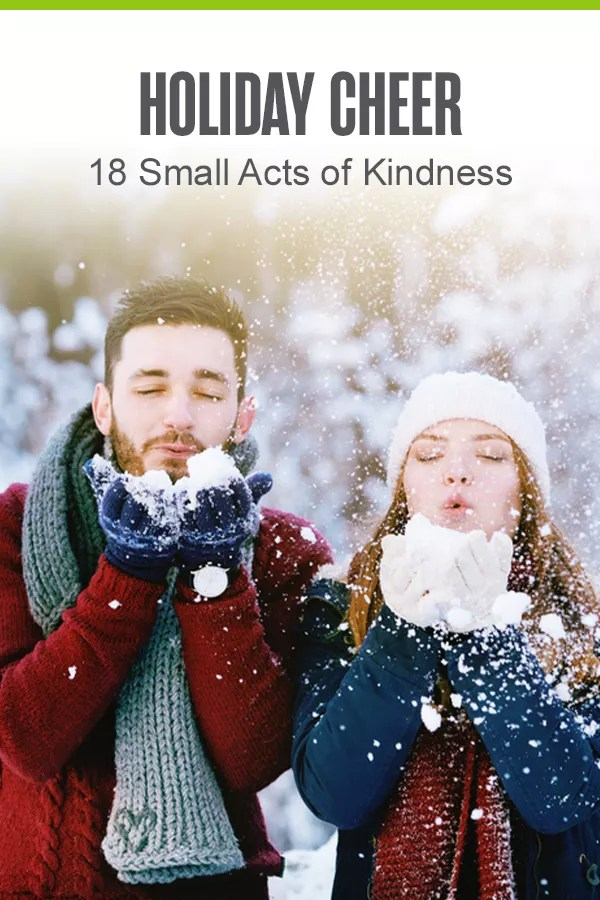 Pinterest Graphic: Holiday Cheer: 18 Small Acts of Kindness