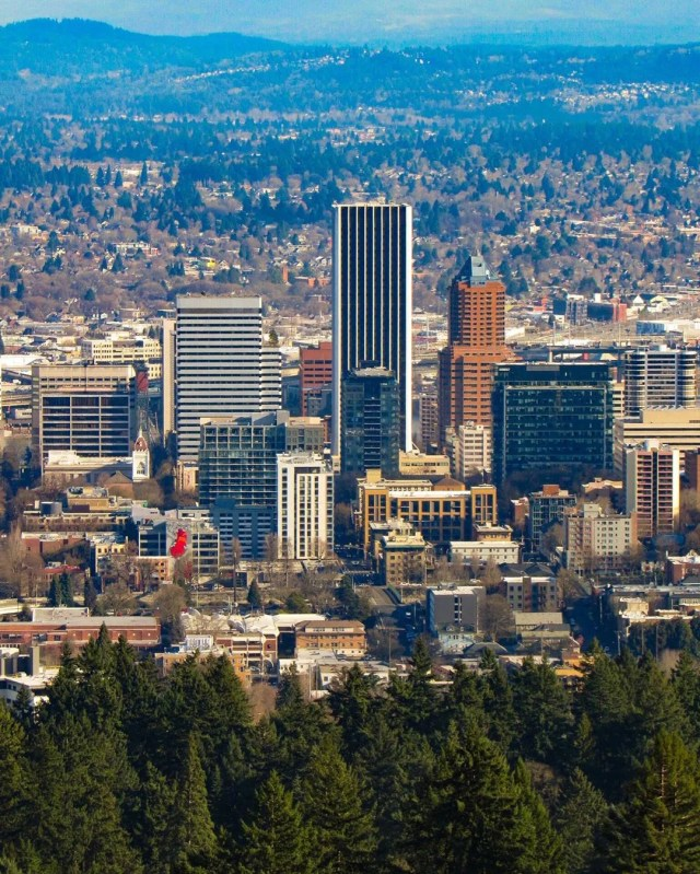 portland, or downtown area with conifers in view photo by Instagram user @yumenogrden