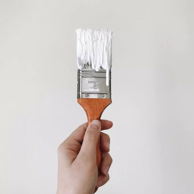 Hand holding paint brush with white paint. Photo by Instagram user @nikkihofmeister