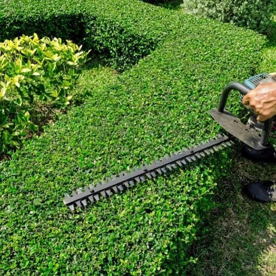 person using electric trimmer trimming shrubs photo by Instagram user @leafittomenc