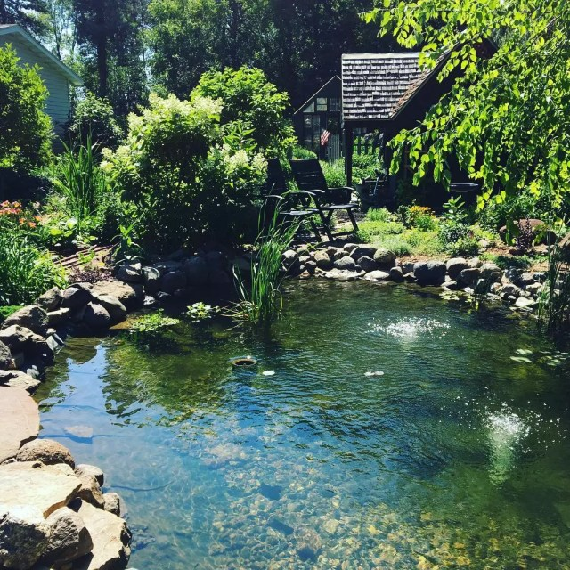 backyard pond feature built into landscaping photo by Instagram user @downtoearthdigs
