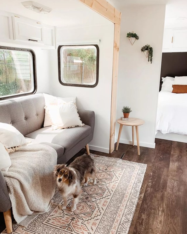 RV with new vinyl wood flooring and dog photo by Instagram user @danielvanhorn