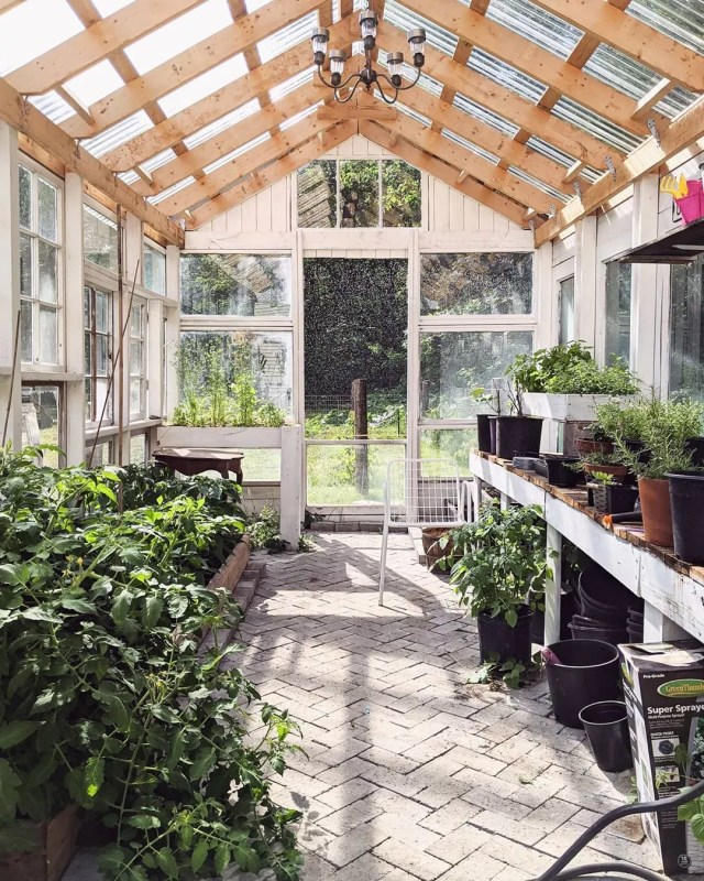 Garden She Shed with Greenery All Around. Photo by Instagram user @charmingnorth.blog