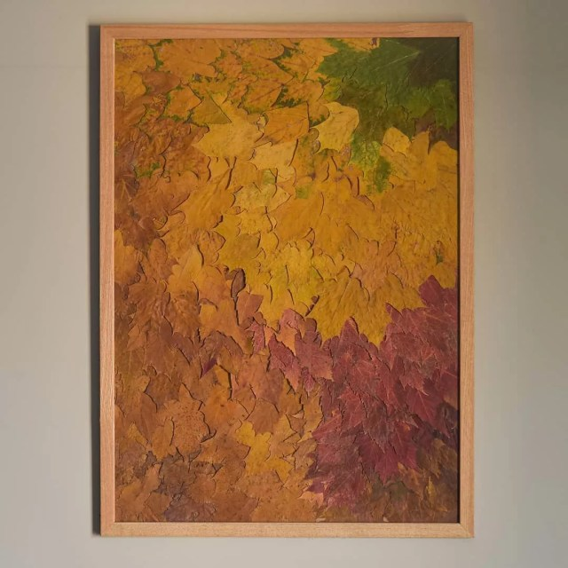 Framed Fall Colored Leaves as Artwork. Photo by Instagram user @framednymph