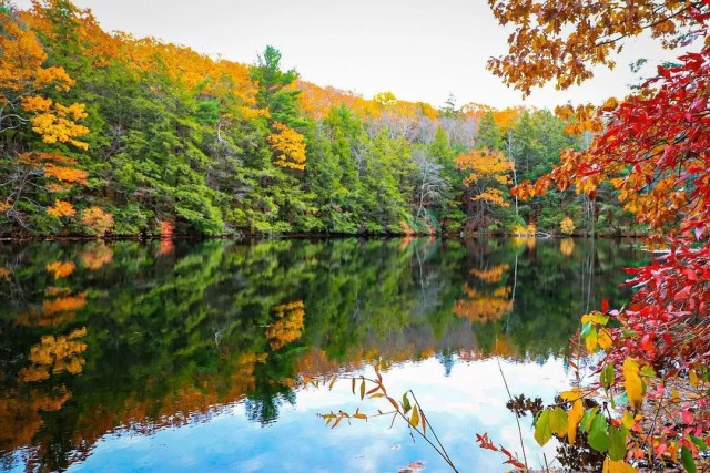 Calm fall photo of Burr Pond State Park. Photo by Instagram user @dottediphoto_insta.