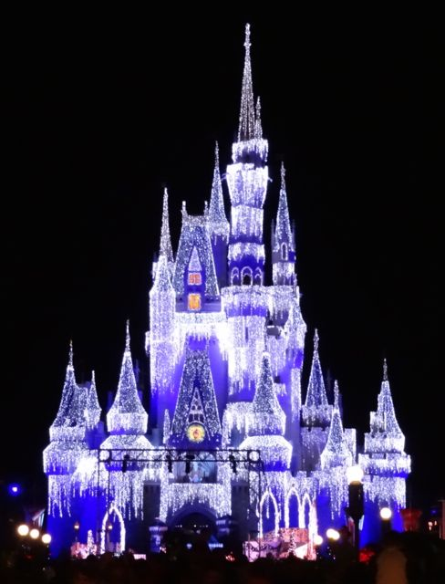 Image result for disney world holiday d-lights tour