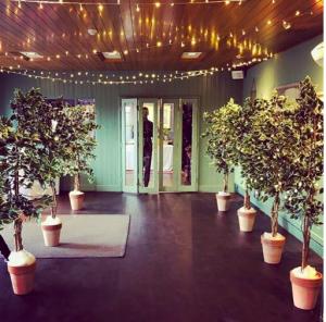 fairylit evergreen wedding trees