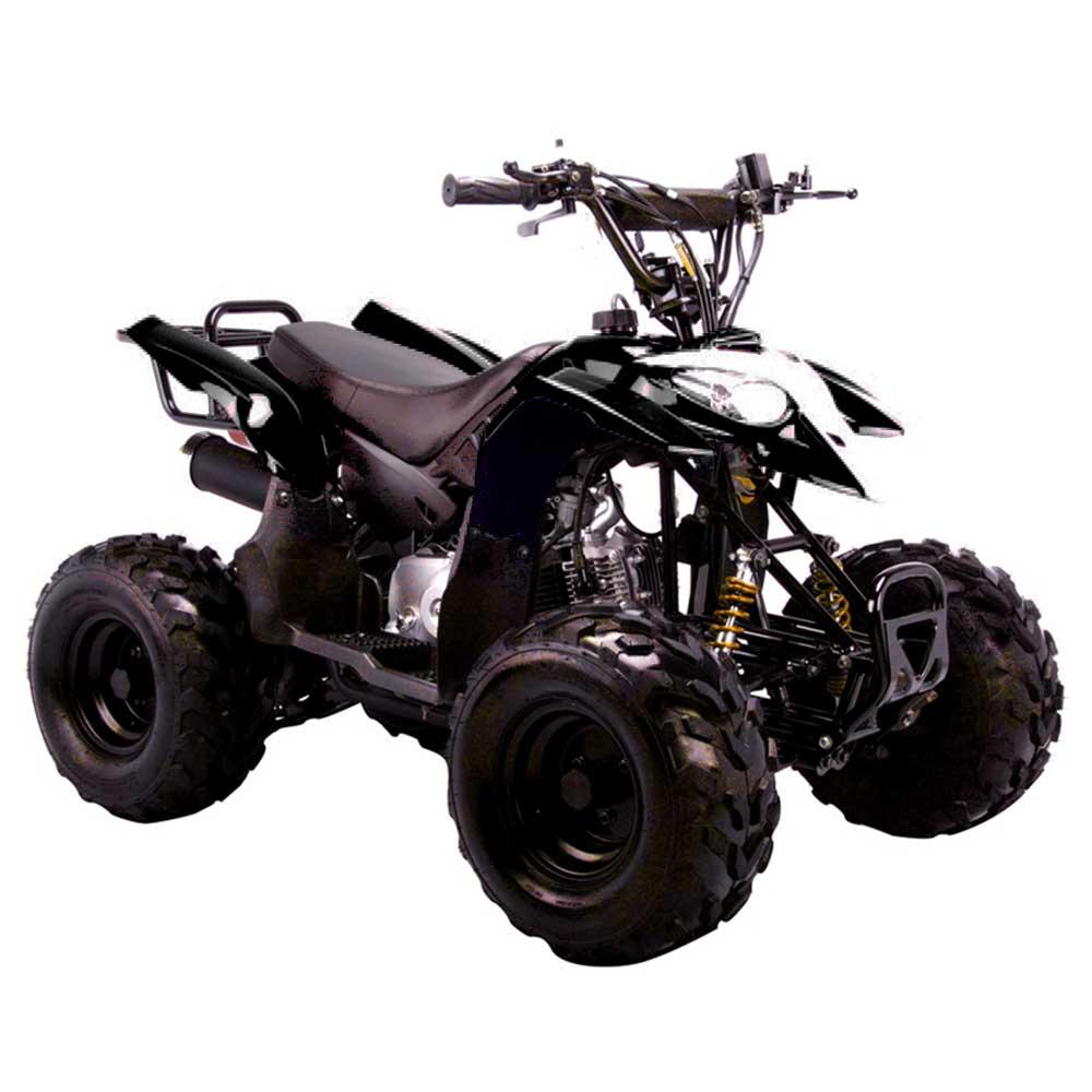 Predator 110cc Youth Atv Mid Size Quad 4 Wheeler 3050b