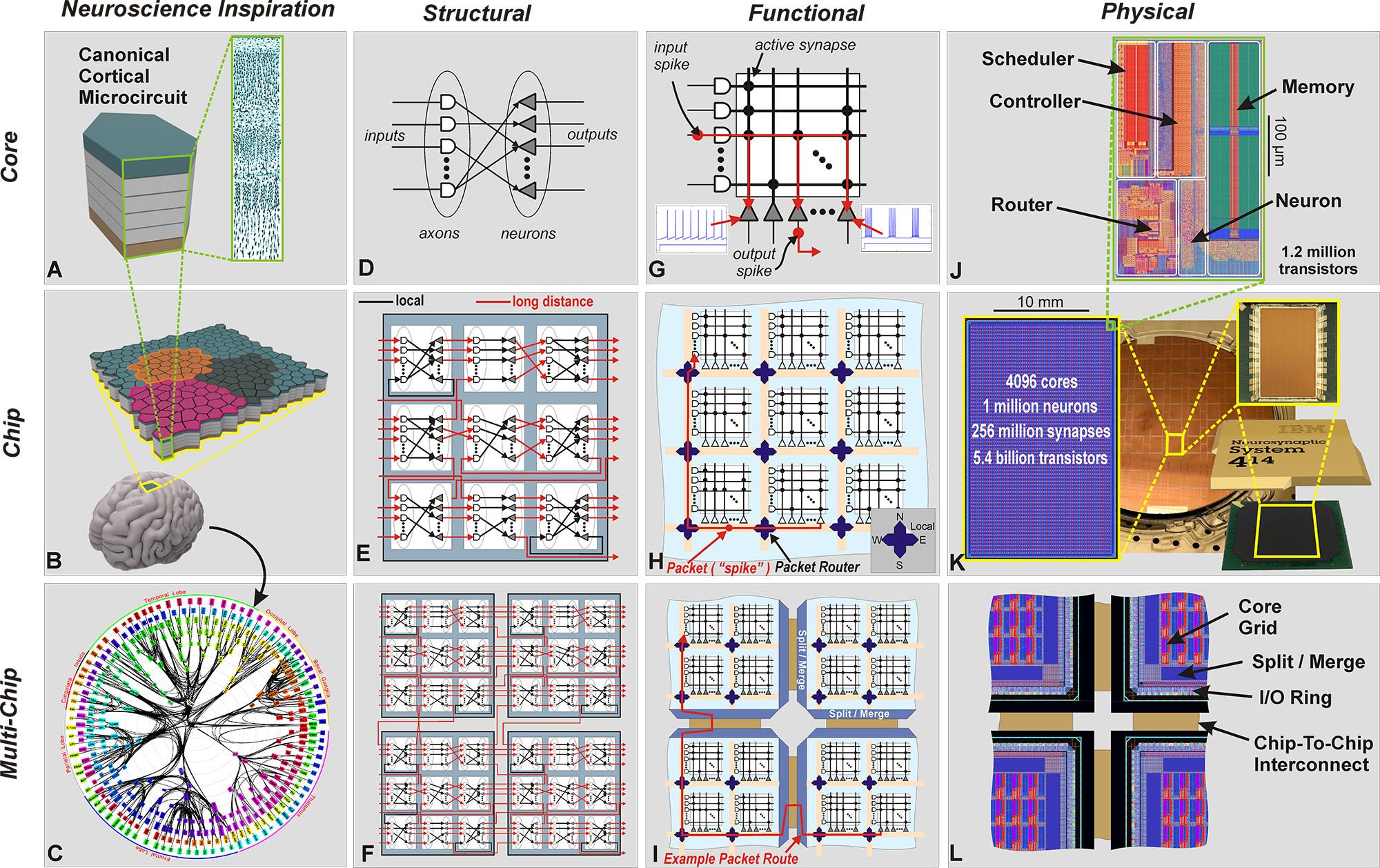 Diagram explaining the various aspects of IBM's TrueNorth chip