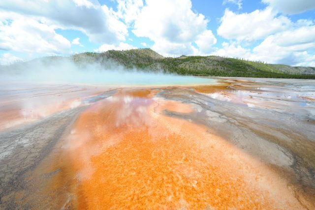 Grand Prismatic at Yellowstone -- Nikon D810 JPEG -- photo by David Cardinal