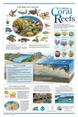 coral-reef-poster