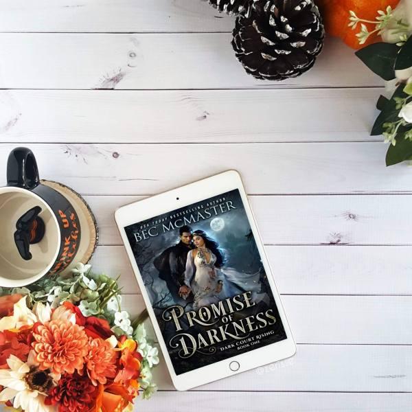 Promise of Darkness bookstagram
