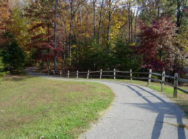 A woman was assaulted yesterday on one of the wooded trails in Anne Arundel County's Downs Park in Pasadena, MD