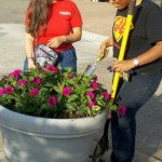 AACC Volunteers Plant Glen Burnie Town Center Beds