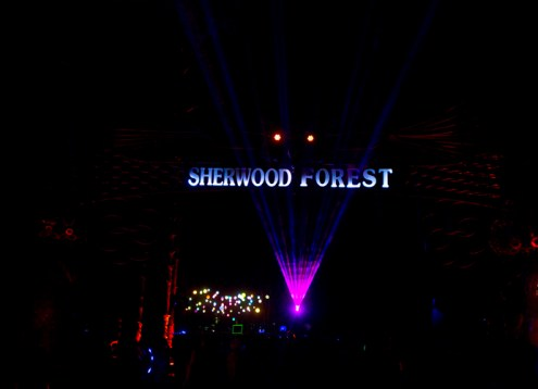 Electric-Forest-2015-119