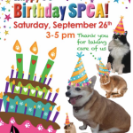 SPCA of Anne Arundel County celebrating 95 years!