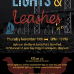 Lights & Leashes at Lights on the Bay