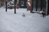 Annapolis Snow January 2016-21