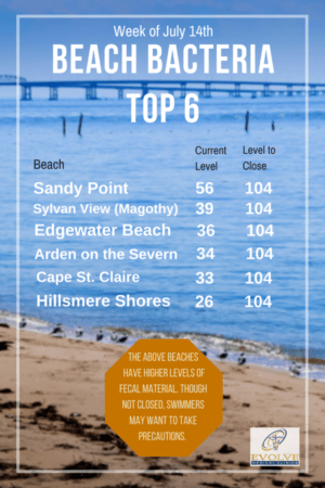 Chesapeake swimming guide from Evolve Direct Primary Care, the Highest Rated Primary Care and Urgent Care serving Edgewater, Davidsonville, Annapolis, Crownsville, Millersville, Gambrills, Crofton, Bowie, Arnold, Severna Park, Glen Burnie, Pasadena, Kent Island and Chester.