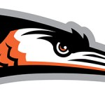Summer At The Yard Series: The Delmarva Shorebirds