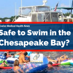 Is It Safe To Swim in the Chesapeake Bay?