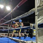 Navy Brigade Boxing Championships showcase proud tradition in Annapolis