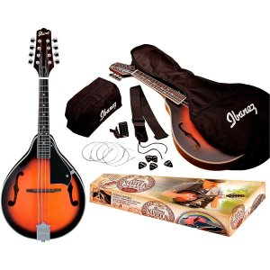 Top 10 best Mandolins